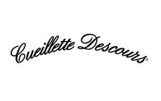brand_logo8