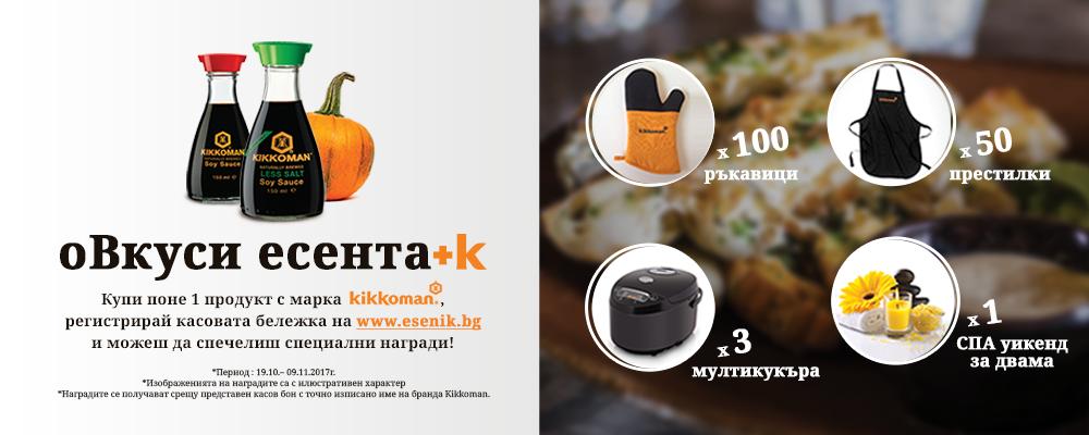 Kikkoman_banner_1000x400